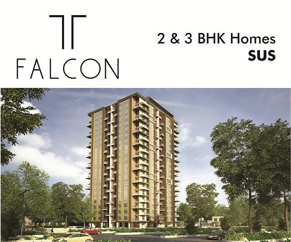 1bhk in hinjewadi